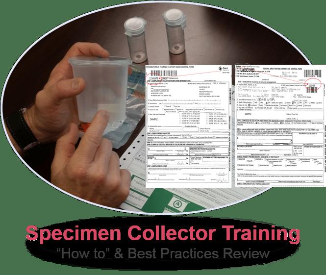 specimen collector Training