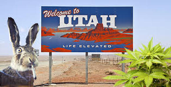 More on Medical Marijuana - Utah